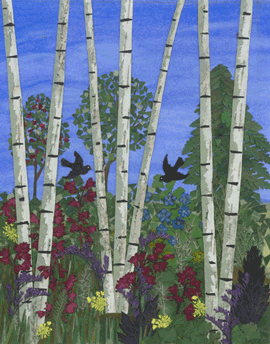 Summer Birch Trees